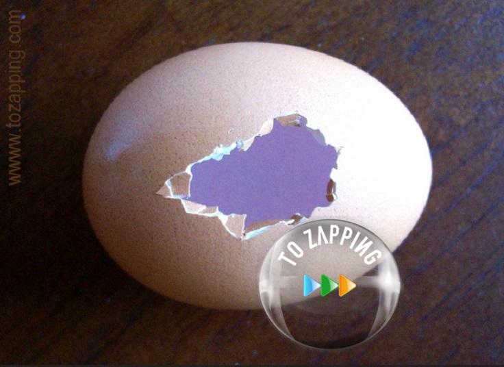Adornos de Navidad hechos con huevo