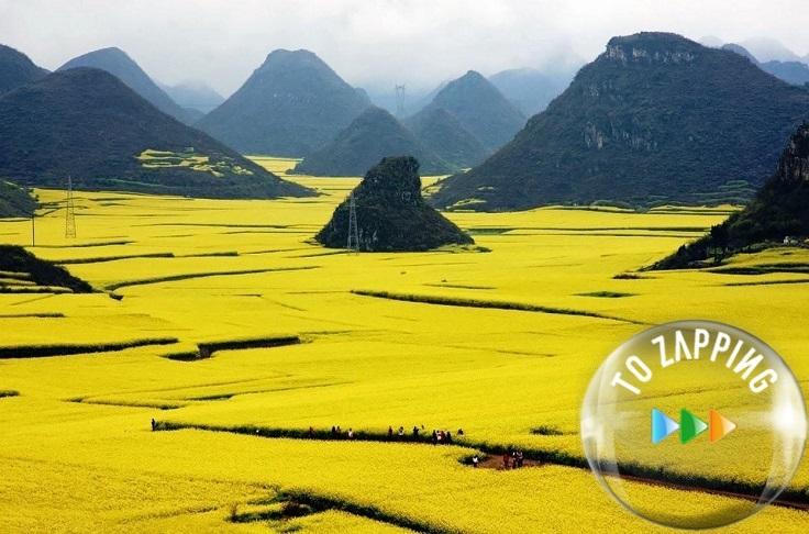 Las colinas escalonadas con flores de canola de Jiangling