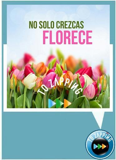 No solo crezcas florece