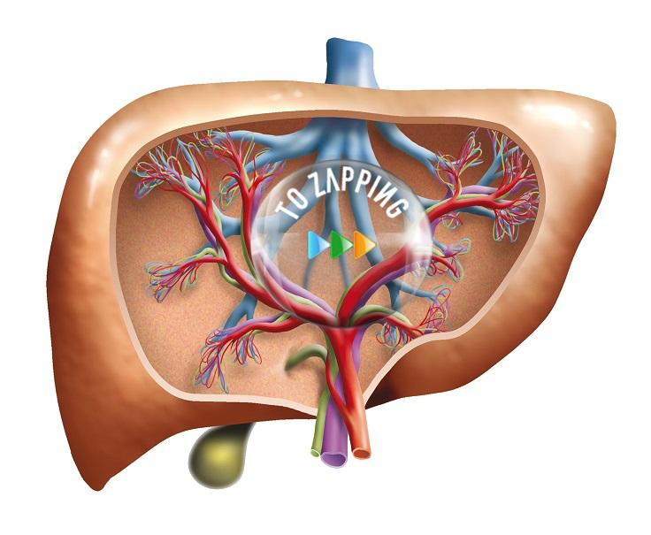 Bebidas para limpiar el hígado y bajar de peso