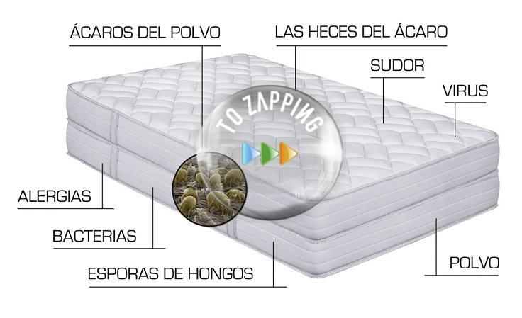 Cómo eliminar los ácaros de la cama