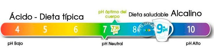10 Razones Por Las Que El Agua De Coco Transforma Tu Salud