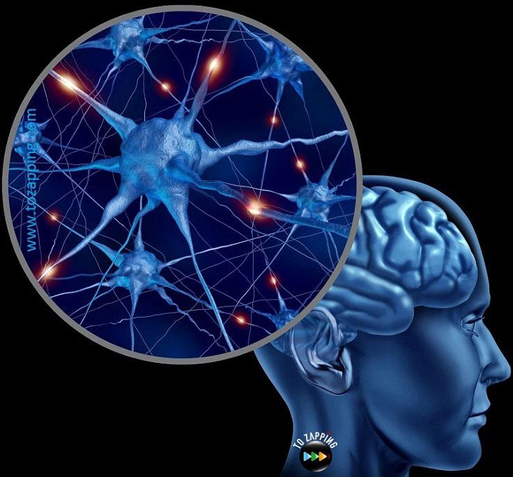 remedios caseros para el insomnio y nervios